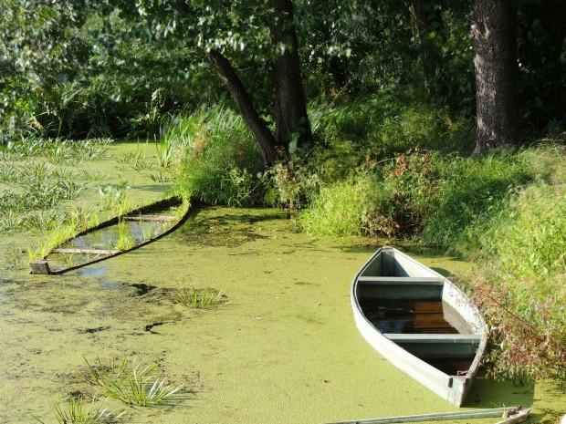 boats1-m